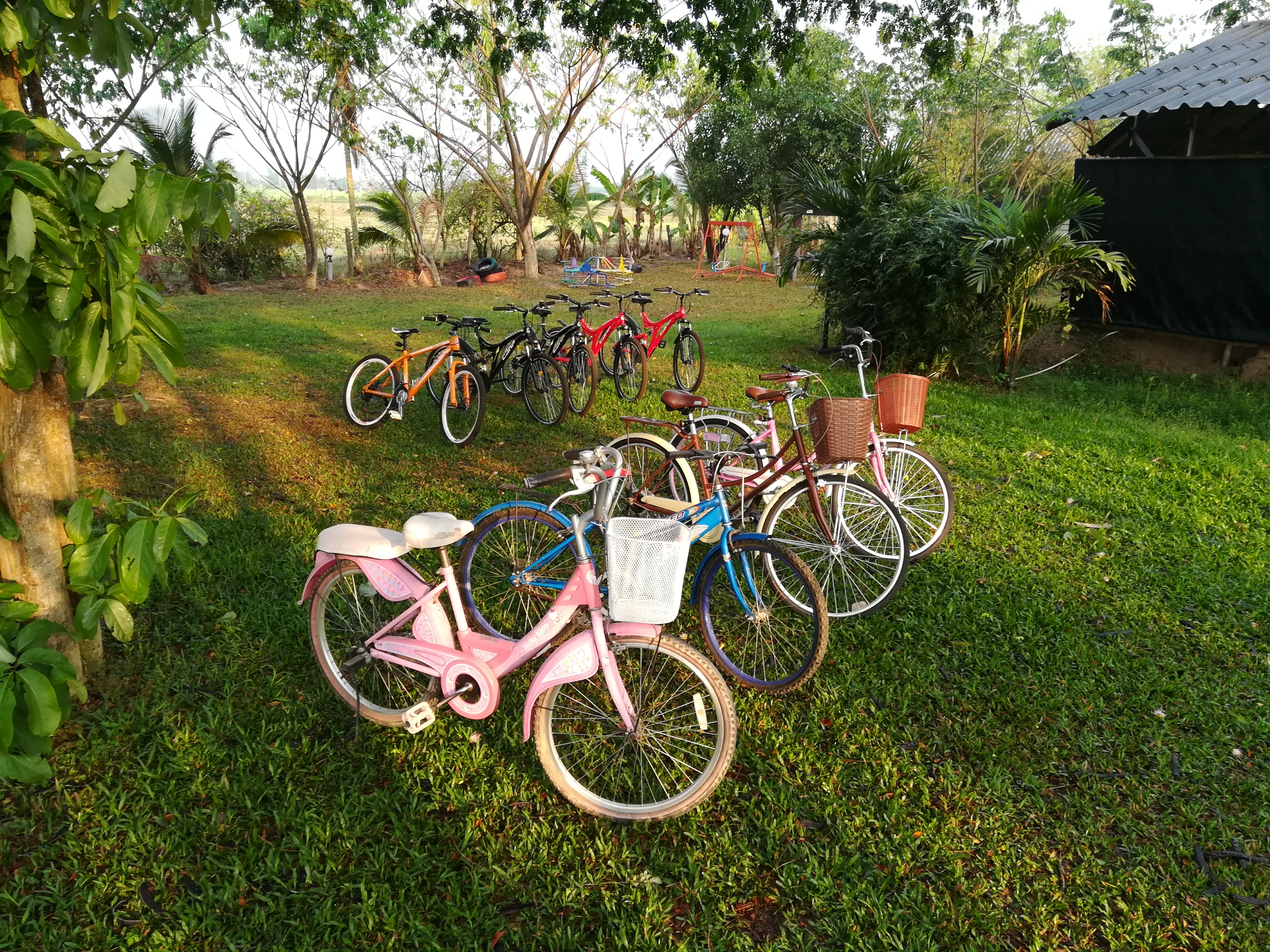 Resort bicycles Rent a Bicycle